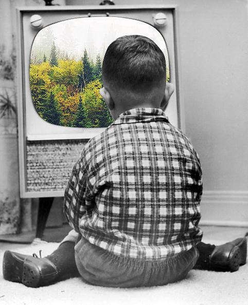 """Merve Ozaslan"" ""Natural act"" ""Digital collage"" ""vintage photography"" photography photomanipulations photoshop creative art amazing surreal"