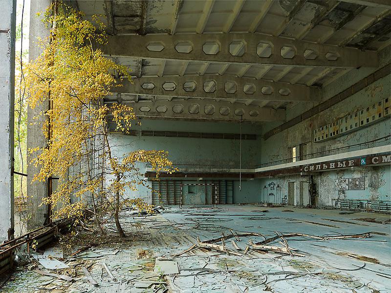 Cuando ya no estés photograph series by Álvaro Sánchez Montañés abandoned places urban exploration dystopian ruins after humans apocalyptic world